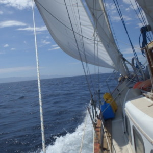 cropped-Chantey-sail-2.jpg