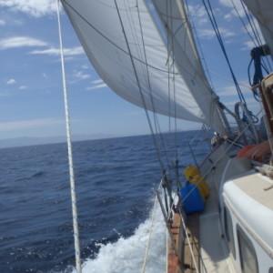 cropped-Chantey-sail-2.jpg